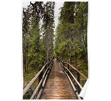 Wooden bridge in a forest Poster