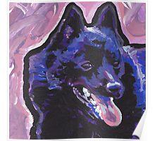 Schipperke Dog Bright colorful pop dog art Poster