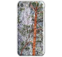 28.2.2015: Pine Trees and Sleet I iPhone Case/Skin