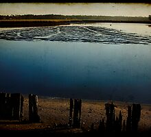 Low Tide at the Bayou by Jonicool