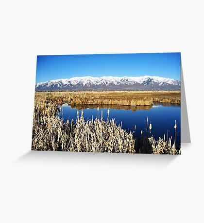 Lakeshore Reserve Greeting Card