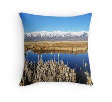 Lakeshore Reserve Throw Pillow