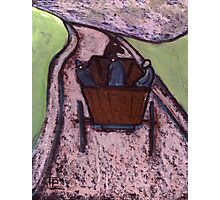 Runaway Horse and Cart Photographic Print