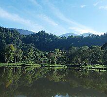 situ gunung lake # 2 by Saepul jamal Sje