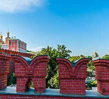 Complete Moscow Kremlin Tour - 06 of 70 by luckypixel