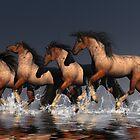 Brays Run by Lisa  Weber