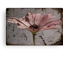 Tainted Beauty Canvas Print