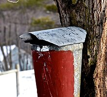 a bucket in vermont by sbackman