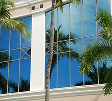 Palm Tree Reflections by Barry Goble