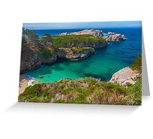 Big Sur Point Lobos State Park China Beach Greeting Card