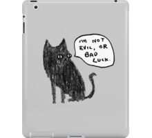 Black Cats Aren't Evil iPad Case/Skin