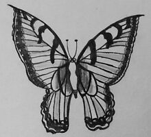 Black and White Butterfly by AnneMerritt