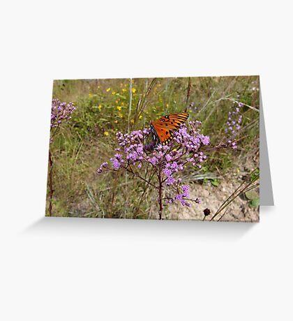 Gulf Fritillary in Ironweed Greeting Card