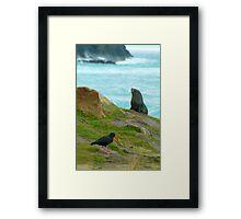 NZ Wildlife Framed Print