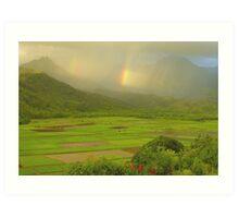 Double Rainbows, Hanalei Valley Art Print