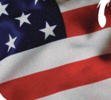 USA United States of America Flag Map Sticker