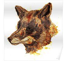 orange fox Poster