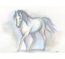White Pony Photographic Print