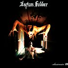 Asylum Fodder by Ross Baraga