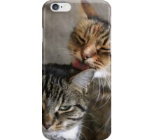 Grumpy Cat iPhone Case/Skin