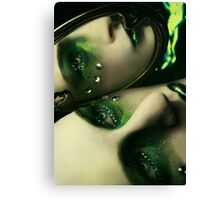 Mirror, Mirror on the Wall Canvas Print