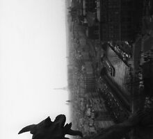 A Gargoyle's View by Violette Grosse