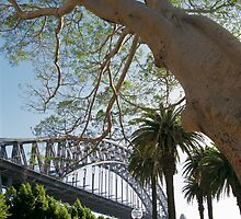 By Sydney Harbour Bridge by Sean Pinwill