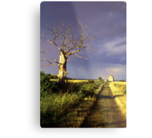 Track to St Peter On The Wall, Bradwell, Essex England. Metal Print