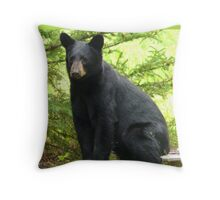 Sitting Black Bear...Mind If I Rest Awhile? Throw Pillow