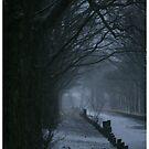winter gone  by Carl deary