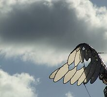 Winged Dream by Violette Grosse