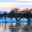 Eastside Lake in November by Brian Dodd