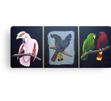 Australian Native Birds Canvas Print
