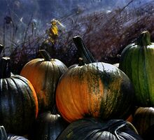 Four Pumpkins by Wayne King
