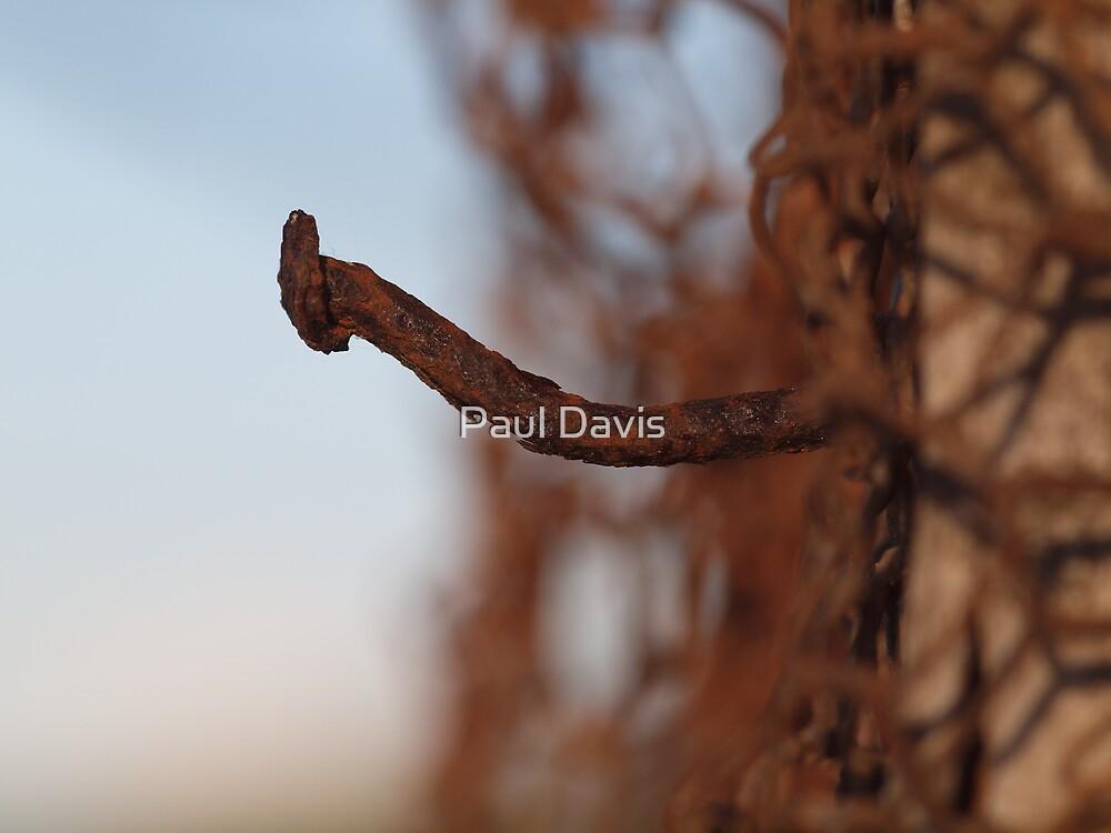 Nail Protruding by Paul Davis
