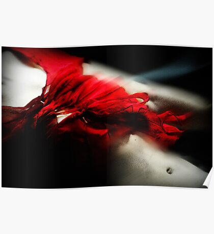 Fleeting flamenco Poster