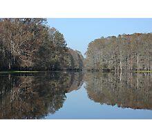 Florida Fall Photographic Print