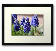 Thinking Purple Framed Print