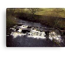 The Falls #5 Canvas Print