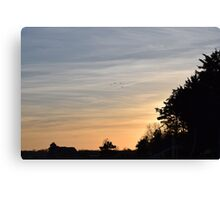 Birds Under a Setting Sun Canvas Print
