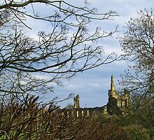 Byland Abbey from the Oldstead Road by WatscapePhoto