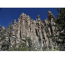 Chiricahua National Monument Tuft 2 Photographic Print