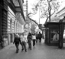 Walking and not really looking by korniliak