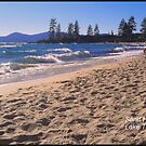 Sand Harbor Beach by daffodil