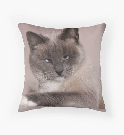 GC Throw Pillow