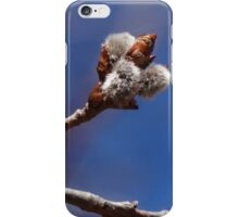 Pussy Willows iPhone Case/Skin