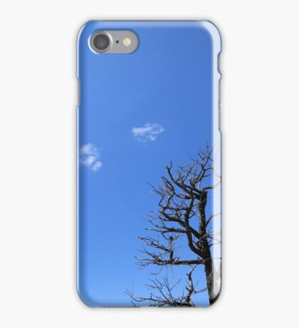 Dead Tree and Two Clouds iPhone Case/Skin