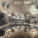 Balboa Park San Deigo California infrared by Jane Linders