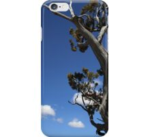 Dying Tree and Clouds 2 iPhone Case/Skin