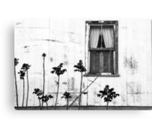 Old Window Tombstone Arizona BW Canvas Print